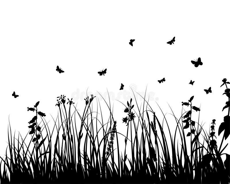 łąk rośliny sylwetka ilustracji