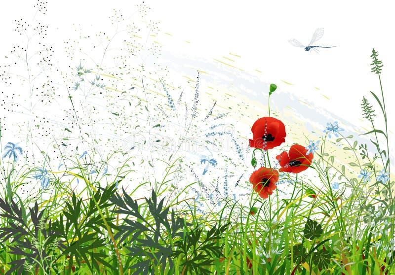 łąka royalty ilustracja