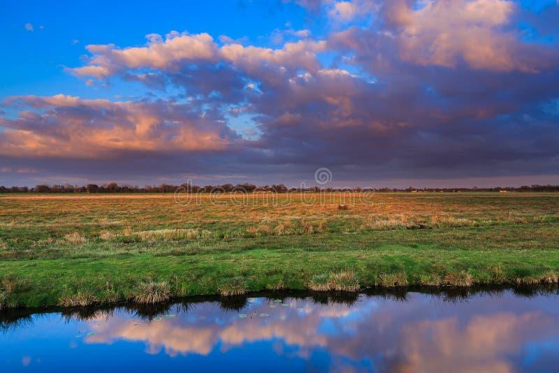 Łąka krajobraz przy zmierzchem zdjęcia royalty free