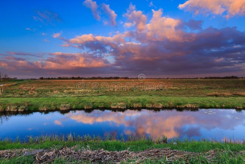 Łąka krajobraz przy zmierzchem obrazy royalty free
