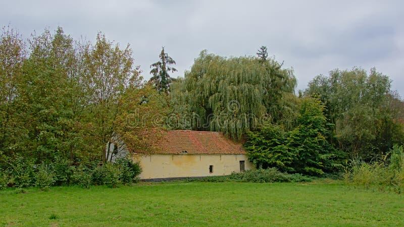Łąka z starą stajnią i drzewa w Flamandzkiej wsi zdjęcie royalty free
