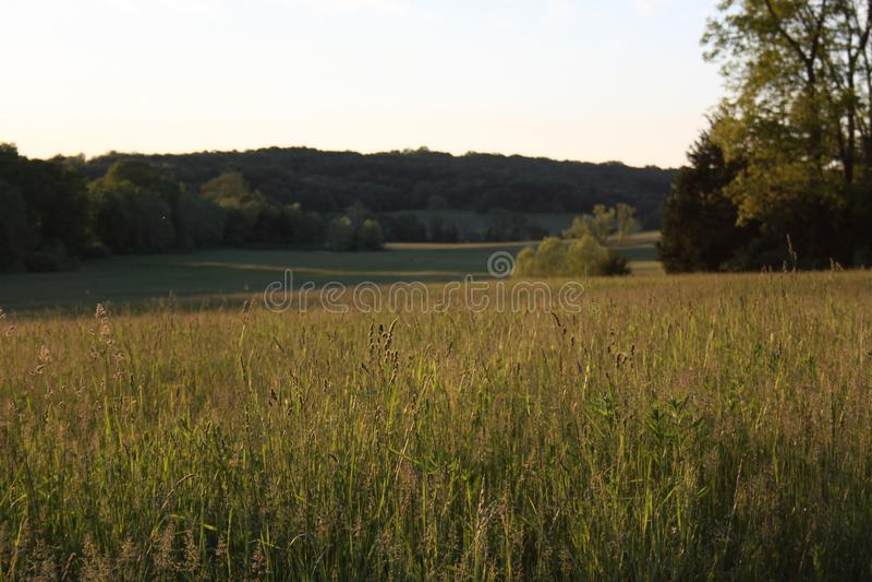 Łąki i dolina Missouri 2019 obrazy stock