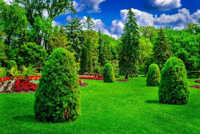 Łąki parkland położenie publicznie zdjęcia royalty free
