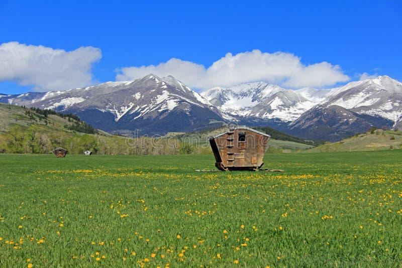 Łąkowe i Szalone góry (2) zdjęcie stock