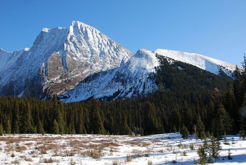 łąkowy halny śnieg obrazy stock
