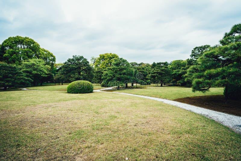 Łąkowy sceneria krajobraz z niebieskim niebem obraz royalty free