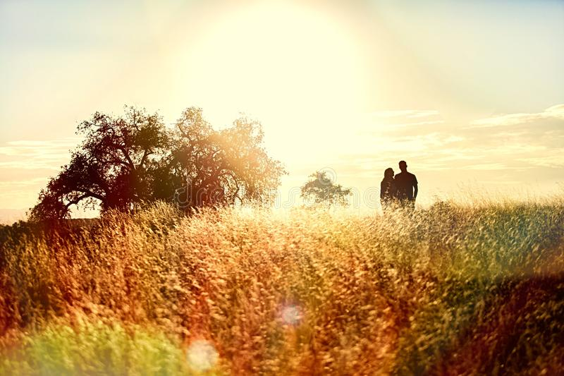 Łąkowy wschód słońca obrazy royalty free