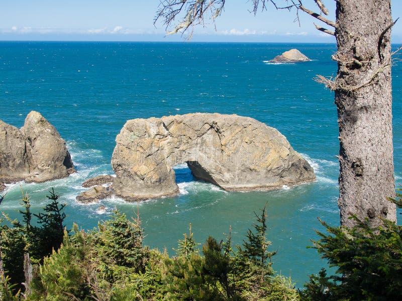 Łękowata skała, Samuel Boardman stanu park, Oregon zdjęcia royalty free