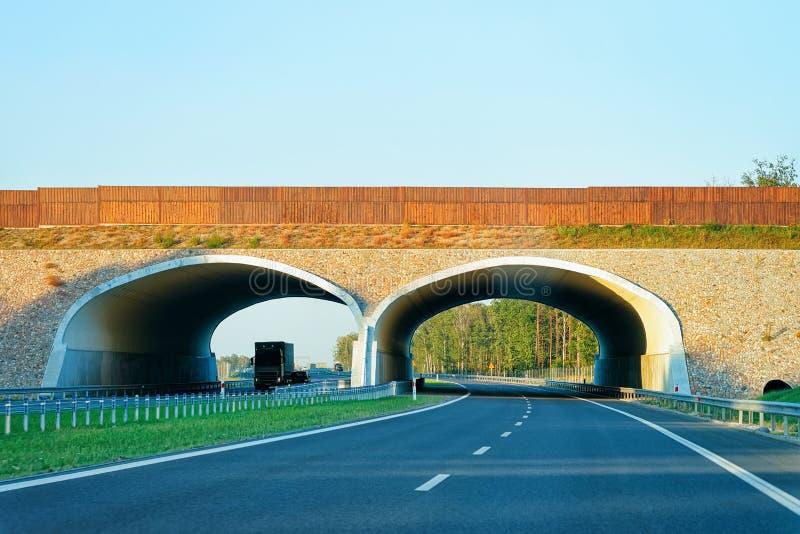 Łękowaty most na autostradzie Drogowy Maribor Slovenia obraz royalty free