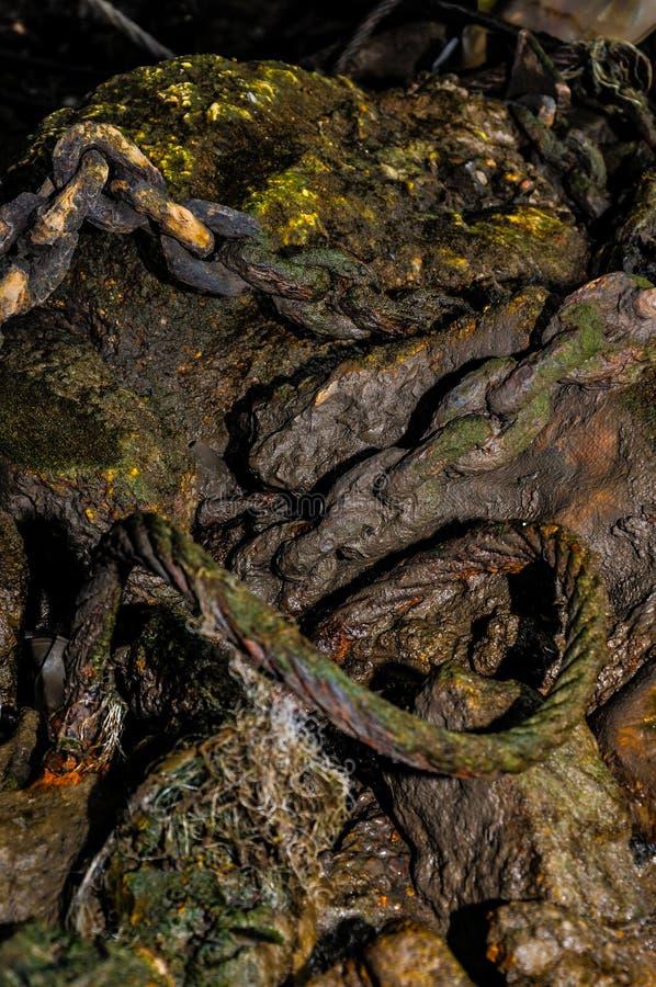 Łańcuchów, arkany i siatkarstwa jałowe banialuki w śluzowatym błocie na Rzecznym Thames, Londyn obraz royalty free