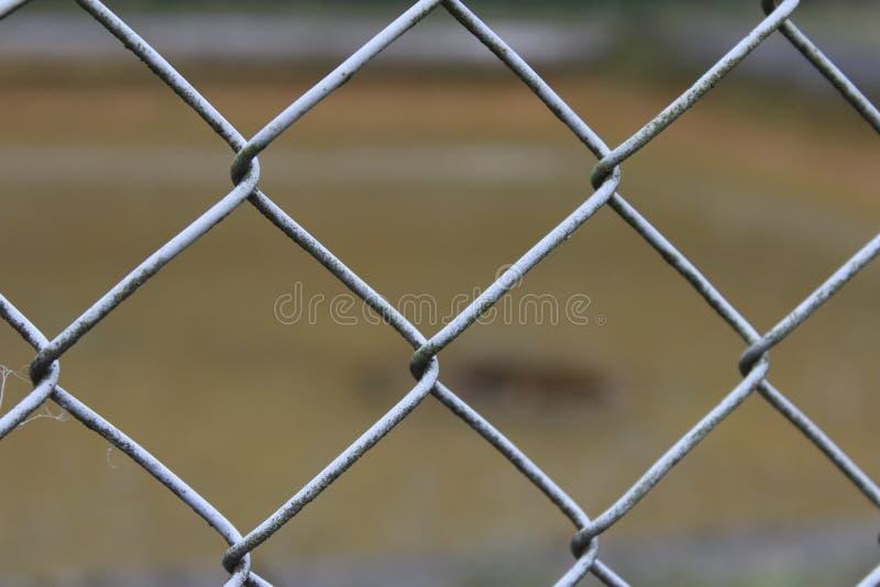 Łańcuszkowego połączenia ogrodzenia drut zdjęcia royalty free