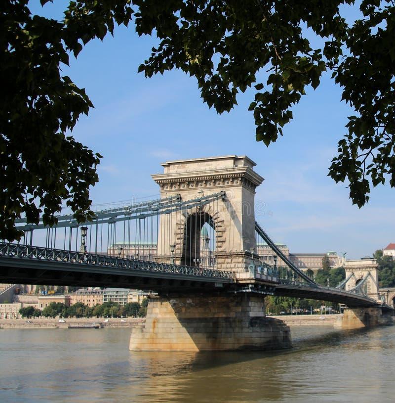 Łańcuszkowy most, piędzie i zaraza Budapest Węgry Szechenyi Rzeczny Danube między Budą zdjęcia royalty free