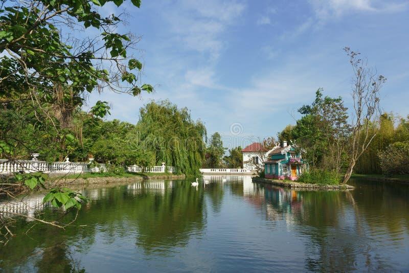 Łabędź pływa w pięknym dużym stawie miasto park południowy miasto obraz royalty free