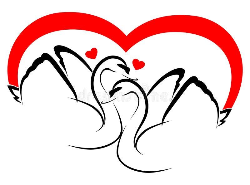2 łabędź w miłości obraz royalty free