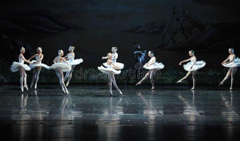 Łabędzi baleta Łabędź jezioro obraz royalty free