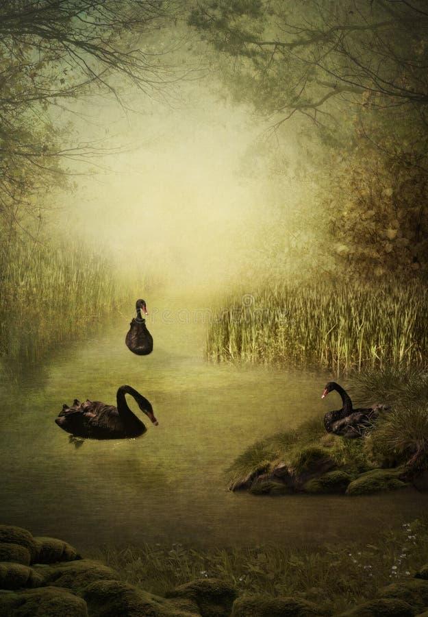 Łabędzi jezioro ilustracji