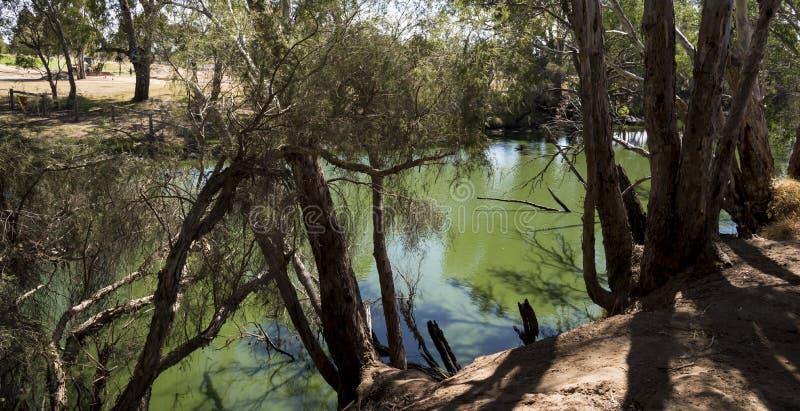Łabędzi Rzeczny widok w Maali mosta parku, Łabędzi Dolinny wino region, W zdjęcia stock