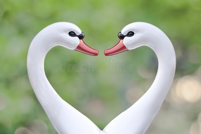 łabędzia łódź w miłość znaku na naturze zdjęcie royalty free