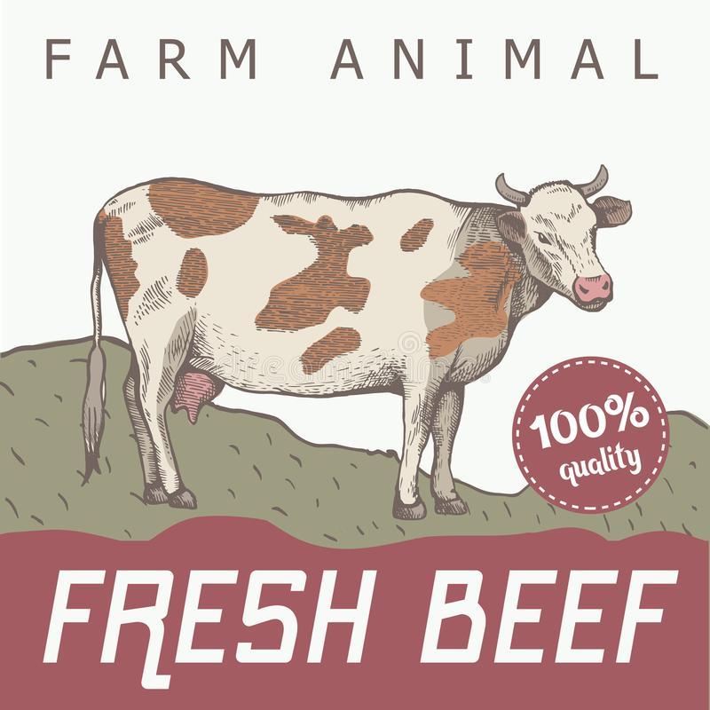 Łaciasta krowa stoi ilustracji