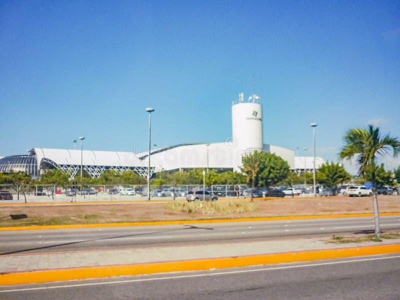 Łaciate oknówki Lotniskowy Fortaleza Brazylia obraz stock