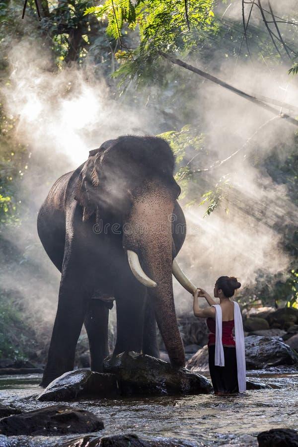 Ładna dziewczyna dotyka słonia ` s kość słoniową w tradycyjnych tajlandzkich kostiumach obrazy stock