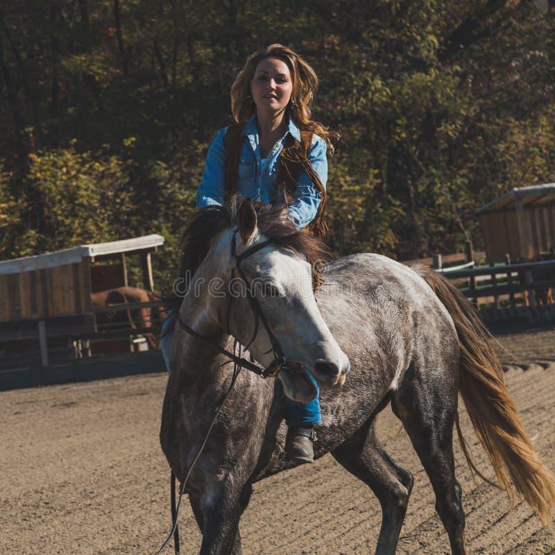 Ładna dziewczyna jedzie jej popielatego konia obrazy stock