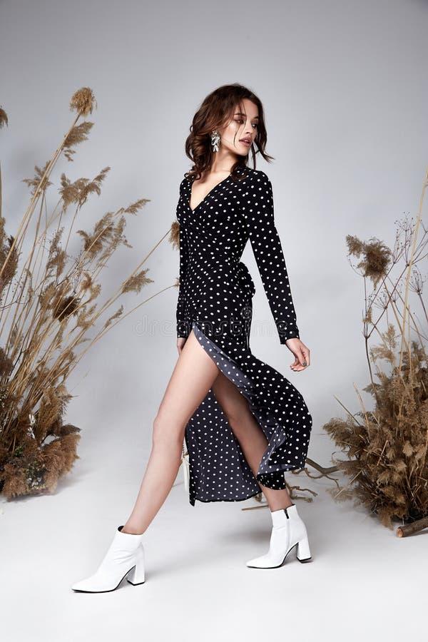 Ładnego mody piękna modela włosianego stylu ciała chuderlawego kształta makeup twarzy kędzierzawa ciemna piękna seksowna kobieta  fotografia royalty free