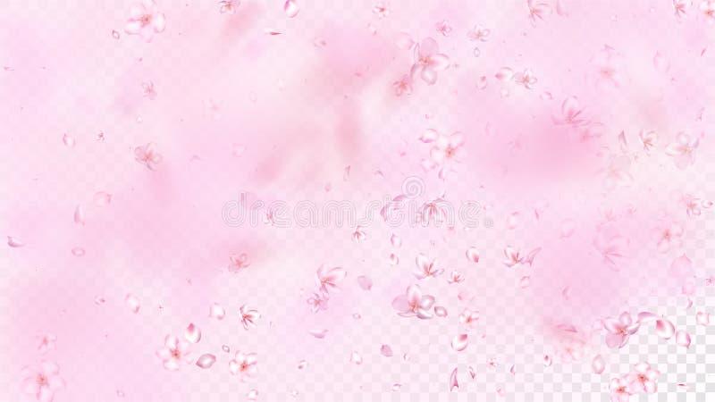 Ładnego Sakura okwitnięcia Odosobniony wektor Czuli Latający płatki Poślubia projekt Japoński Orientalny kwiat walentynki matki d ilustracji