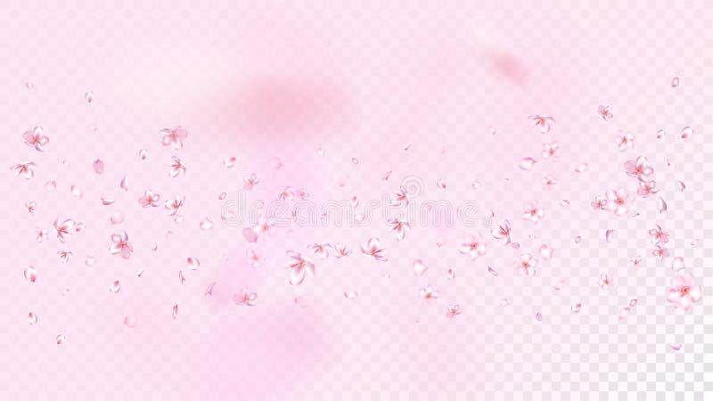 Ładnego Sakura okwitnięcia Odosobniony wektor Lato Lata 3d płatki Poślubia projekt Japońscy natura kwiaty Walentynka, matka dzień royalty ilustracja