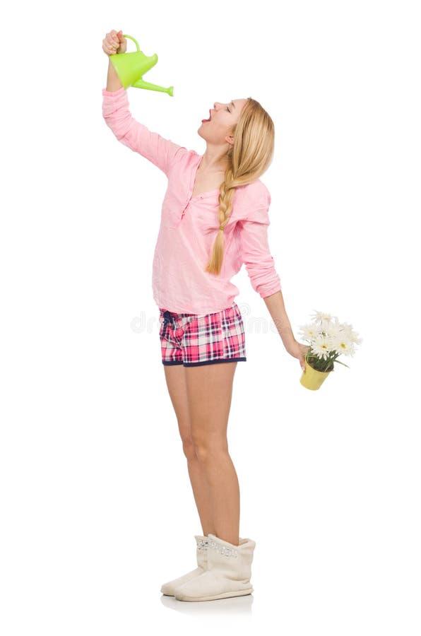 Ładni dziewczyny mienia podlewania kwiaty i obraz royalty free
