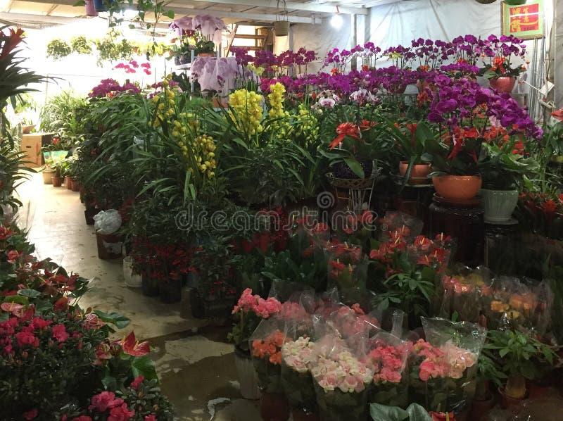 Ładni kolorowi kwiaty dla sprzedaży przy sklepem fotografia royalty free