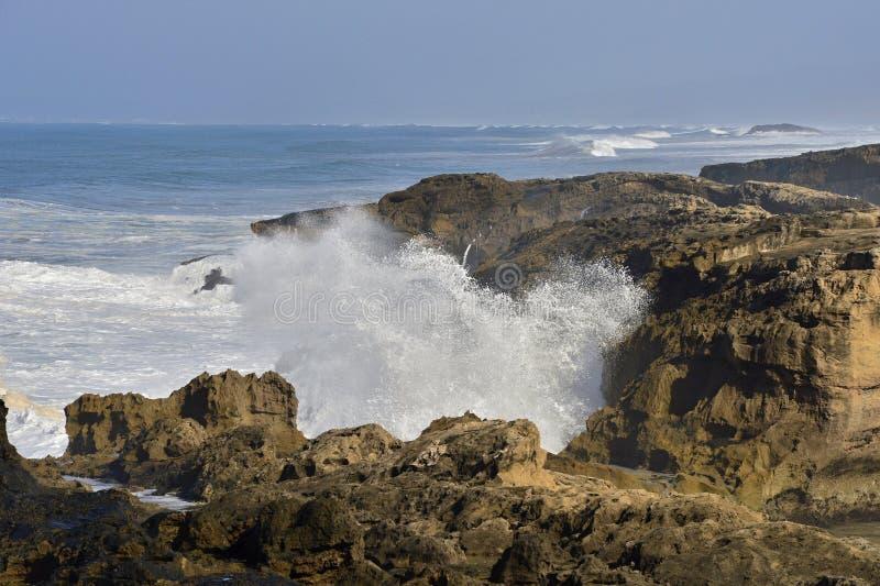 ładny atlantycki wybrzeże fotografia royalty free