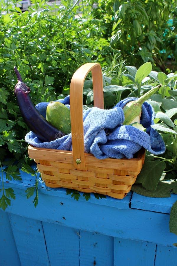 Ładny drewniany kosz wypełniał z owoc i warzywo lato obraz royalty free