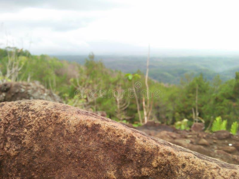 Ładny duży kamień unieśmiertelniać fotografia stock