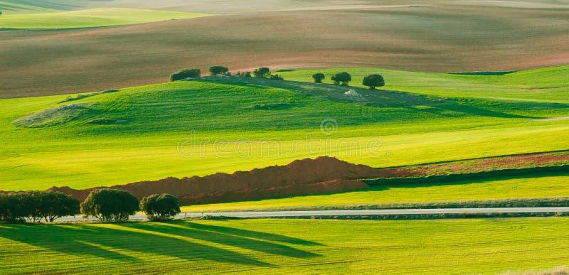 Ładny hiszpański krajobraz przy latem obrazy royalty free