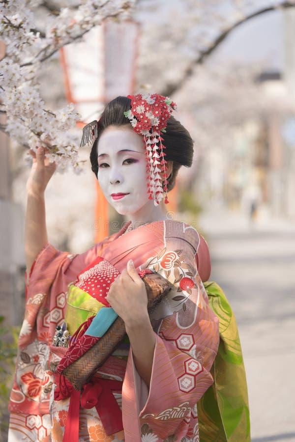 Ładny japoński gejszy cosplayer w kimonie z kanzashi trzymać wiśni gałąź i szpilkami ja obrazy stock