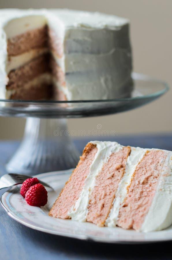 Ładny plasterek tort zdjęcie stock