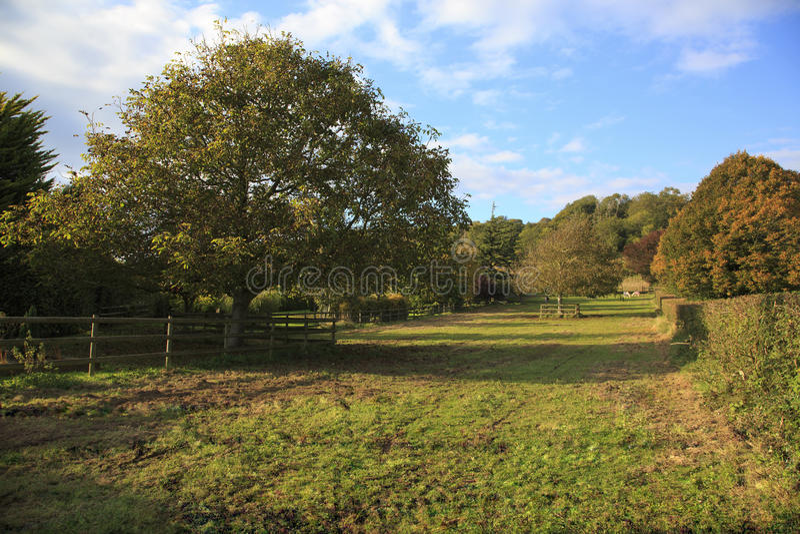Ładny Somerset ziemi uprawnej widok zdjęcie royalty free