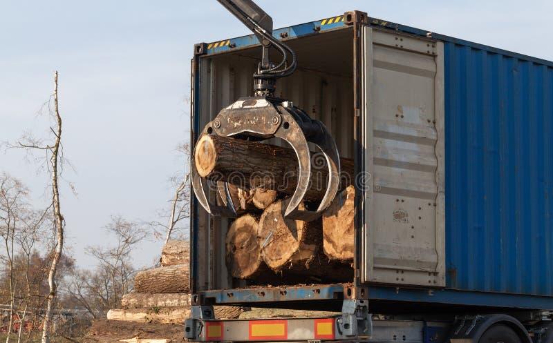 Ładować drzewa w ciężarówce obrazy royalty free