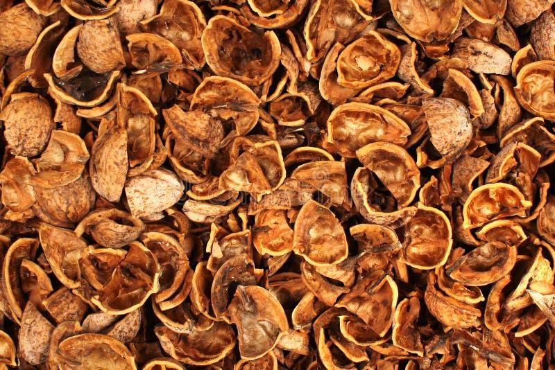Łamane orzech włoski skorupy jako tło zdjęcie stock