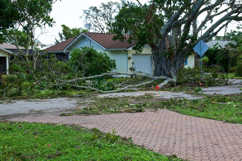Łamani drzewa z domem po huraganu zdjęcie royalty free