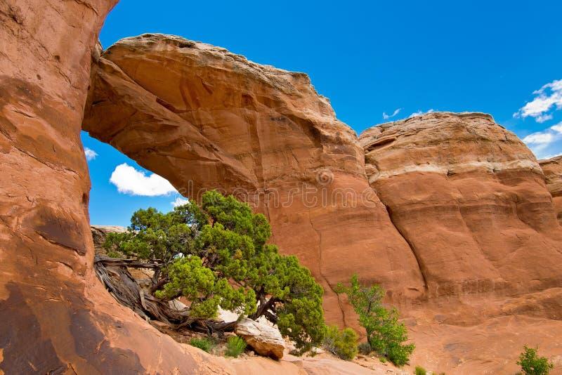 Łamany łuk w łukach parki narodowi, Utah zdjęcie stock