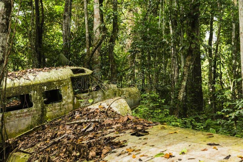 Łamany samolot chujący w lesie fotografia stock