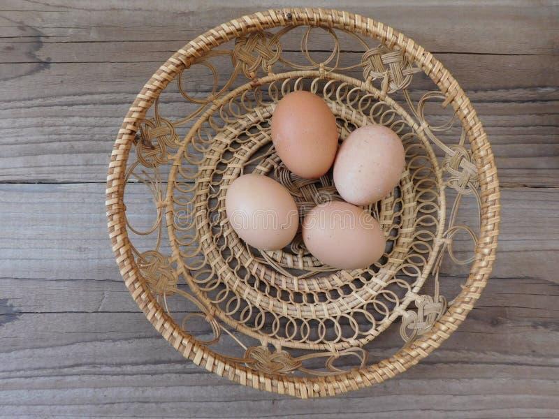 łasowań jajka zdjęcia royalty free