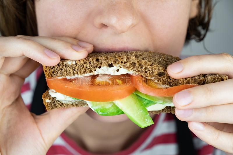 Łasowania avocado i pomidorowa kanapka, w górę obraz royalty free
