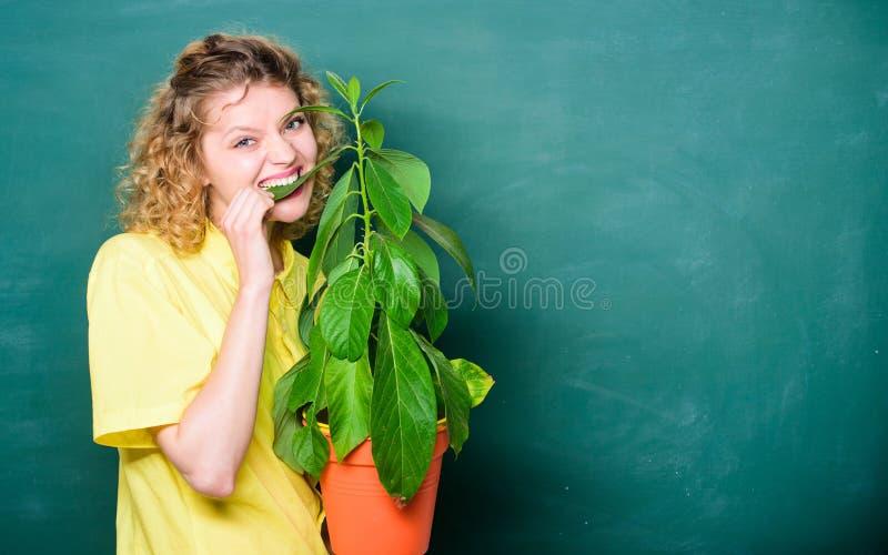Łatwi houseplants Botanika jest o rośliien ziele i kwiatach Bierze dobrych opiek houseplants Dziewczyna chwyta roślina w garnku k zdjęcia royalty free