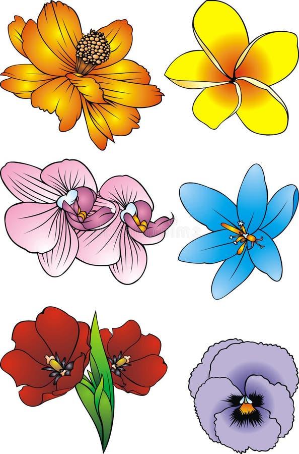 Łatwi kolorów kwiaty royalty ilustracja