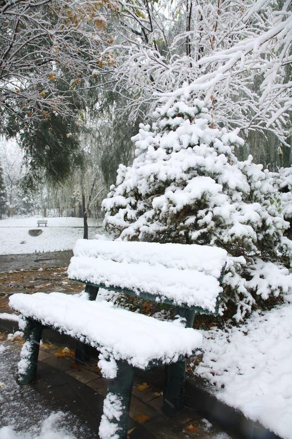 ławka śnieg fotografia royalty free