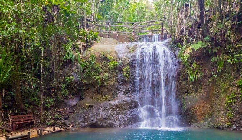 Ławka i siklawa w Suva lasu tropikalnego parku narodowym, rezerwat przyrody blisko Suva, Viti Levu wyspa, Fiji, Melanesia, Oceani obrazy royalty free