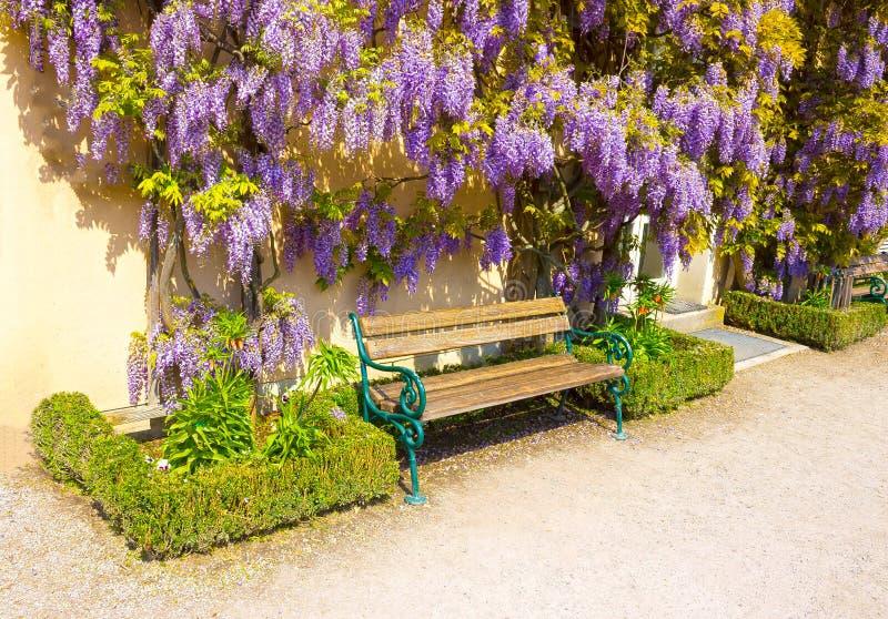 Ławka otaczająca wiosna kwiatami zdjęcie stock